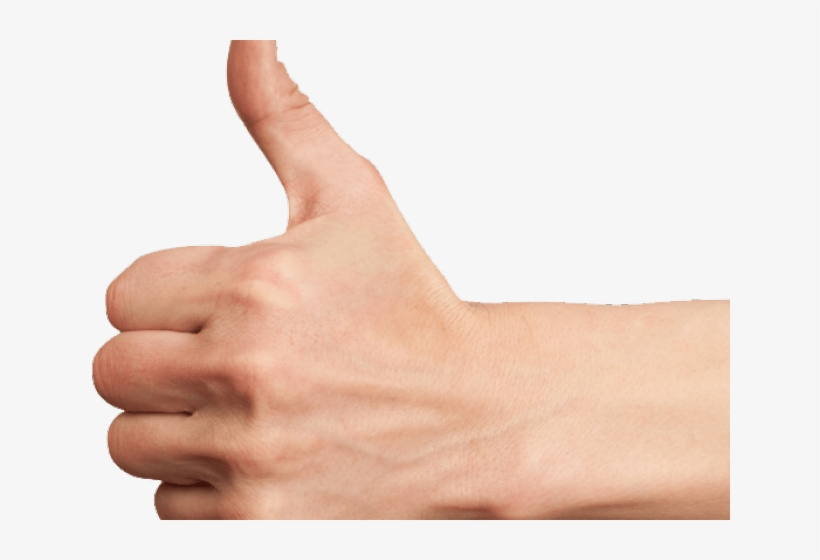 Thumbs Up Transparent Png - Thumb Up Hand Png, transparent png #8333393