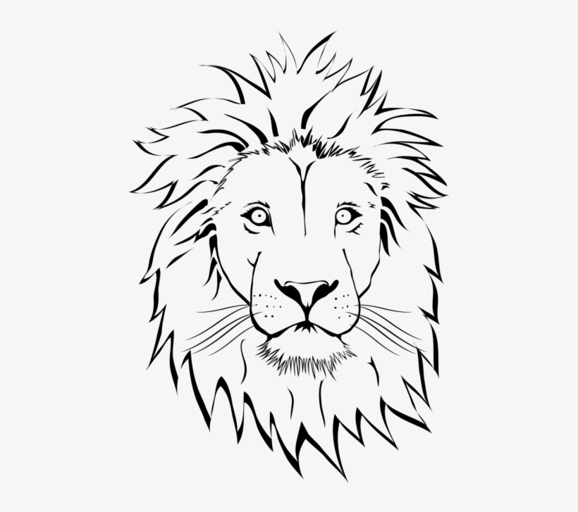 Lion Face Drawing Png Free Transparent Png Download Pngkey The resolution of png image is 824x1001 and classified to rectangle outline ,city outline ,lion face. lion face drawing png free