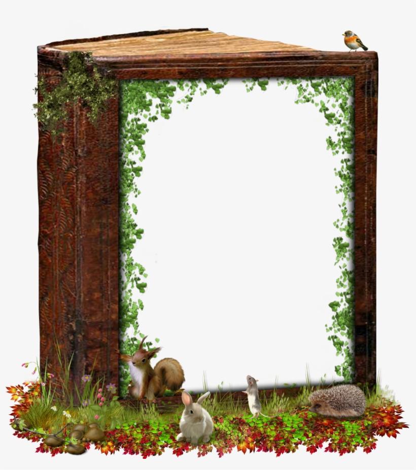 Cadre Nature Png - Cadre Nature, transparent png #8394735