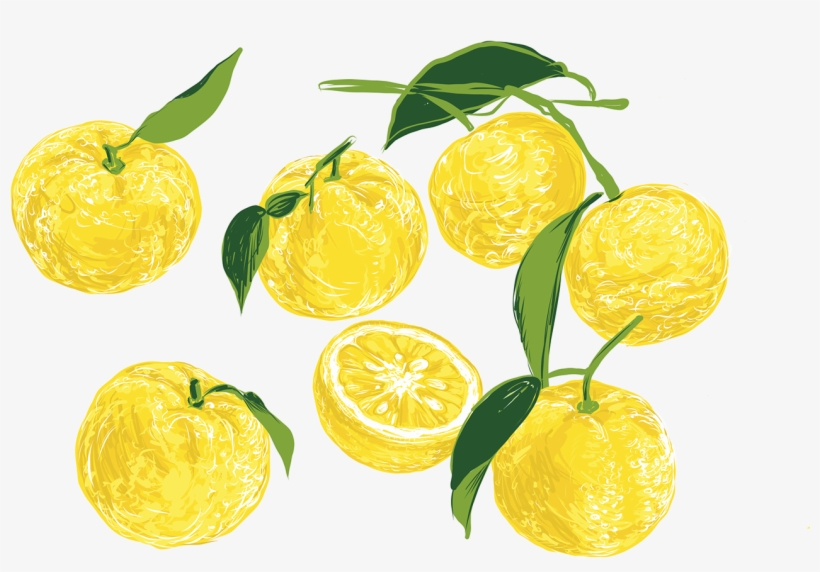Lemon Cake On Behance Image Freeuse Library - Library, transparent png #845623