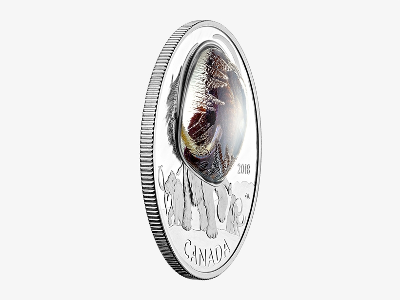 Pure Silver Coloured Coin Frozen In Ice - Silver, transparent png #8408140