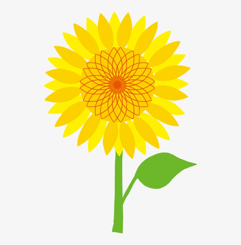 Common Sunflower Scalable Vector Graphics Clip Art ...