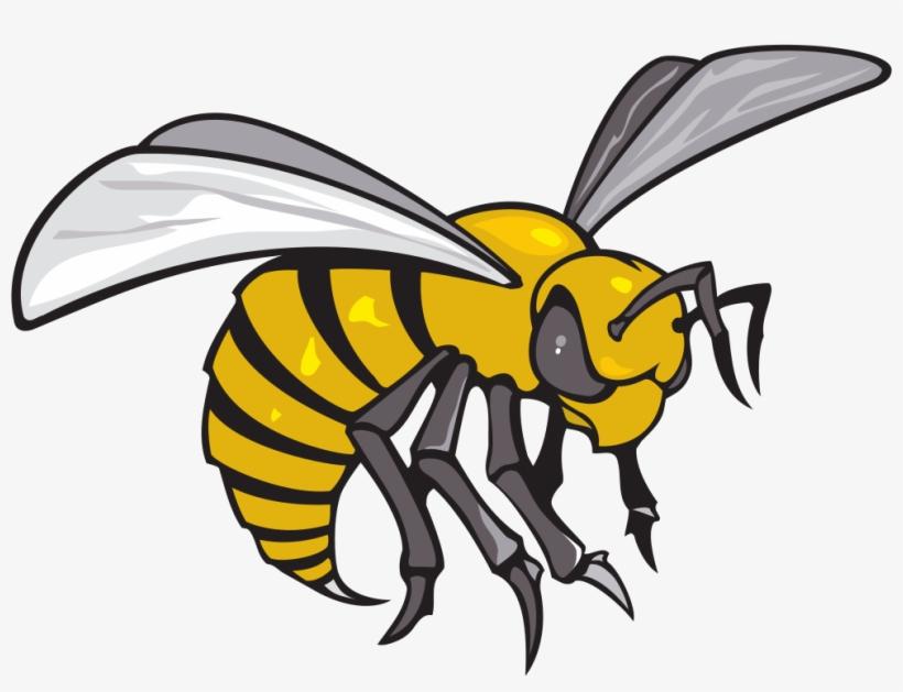 Alabama State Hornets Logo - Alabama State University Hornet, transparent png #8464331