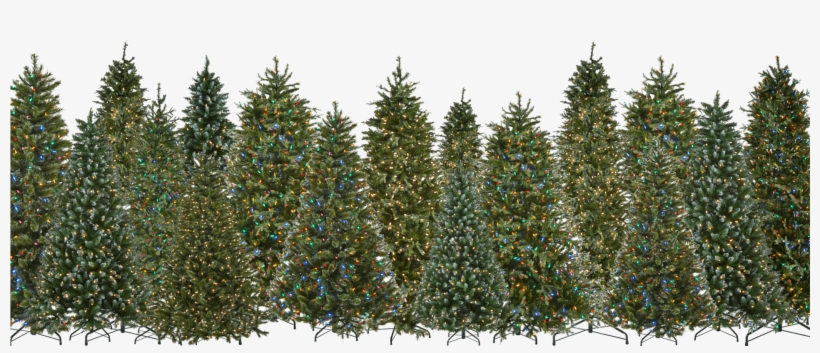 Pre-lit Led Artificial Christmas Trees Are Our Specialty - 9' Cascade Fir With Clear Led Lights, transparent png #852599