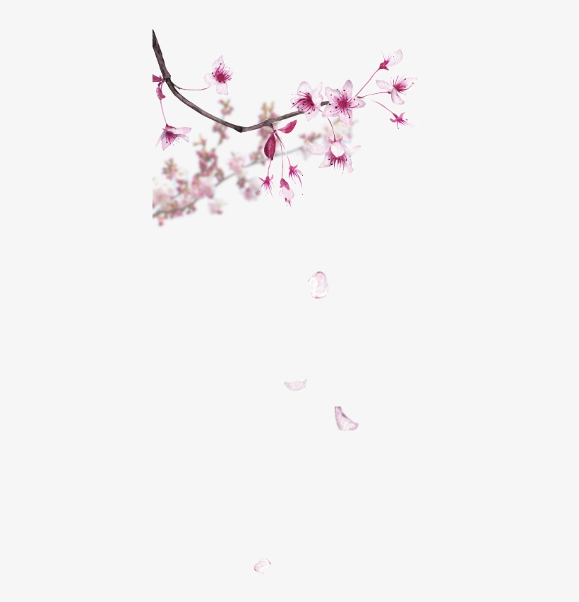 Parfum Pas Cher, Coffret Parfum, Parfumerie En Ligne - Cherry Blossom Watercolor, transparent png #8572260