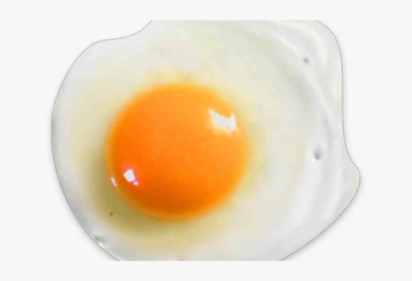 Fried Egg, transparent png #8583086
