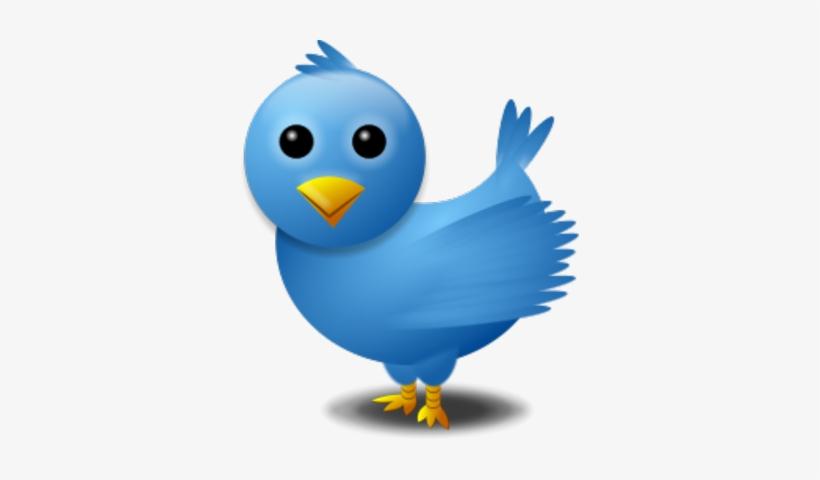Twitter Bird Logo Psd - Twitter Search Png, transparent png #877683