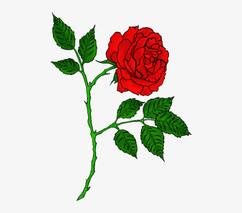 Rose Tattoo Images All - Red Rose Tattoo Transparent, transparent png #878867