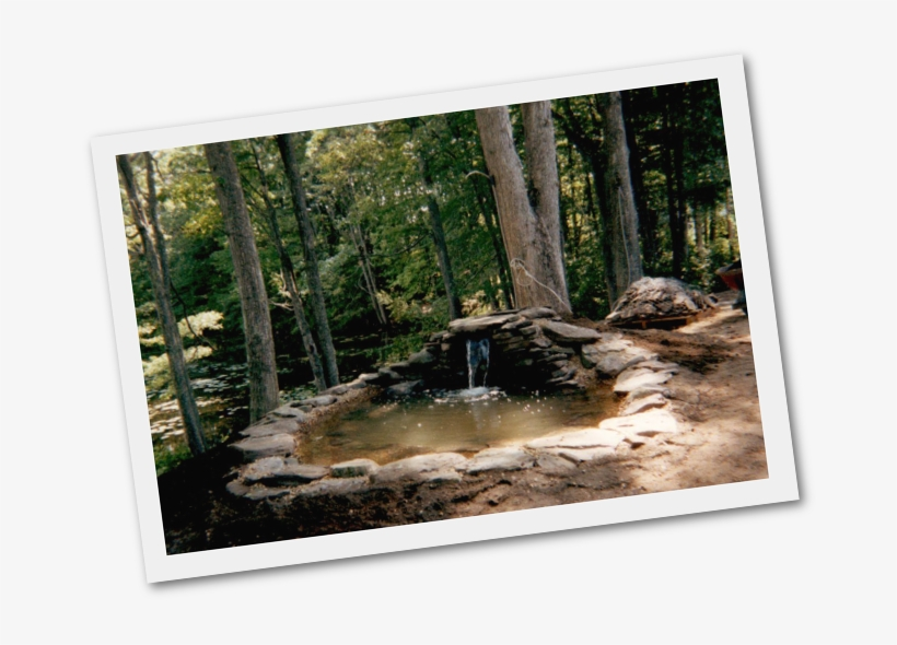 Adding Fish Ponds And Water Gardens New Hampshire Pond - Fish Pond, transparent png #8708665