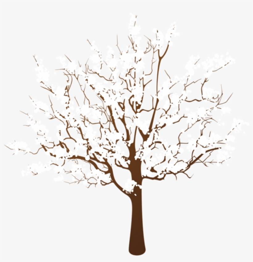 Free Png Winter Tree Transparent Png - Winter Tree Clipart Png, transparent png #8709873