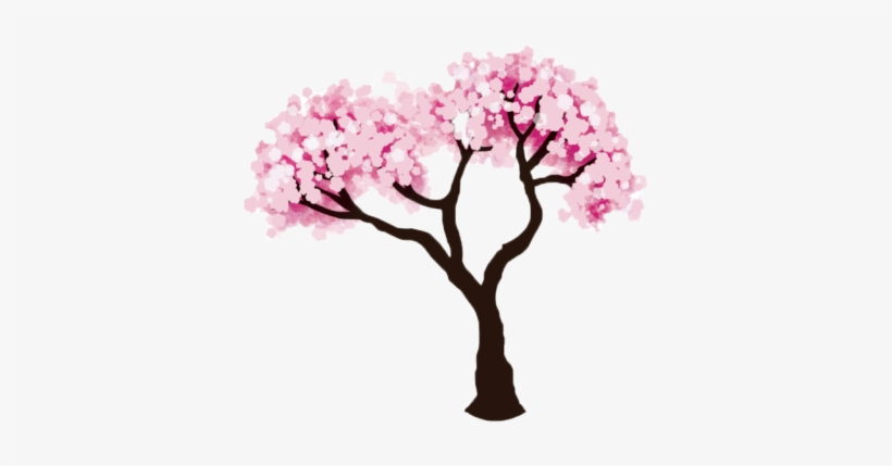 Drawn Cherry Blossom Transparent - Cherry Tree Drawing Easy, transparent png #8743006