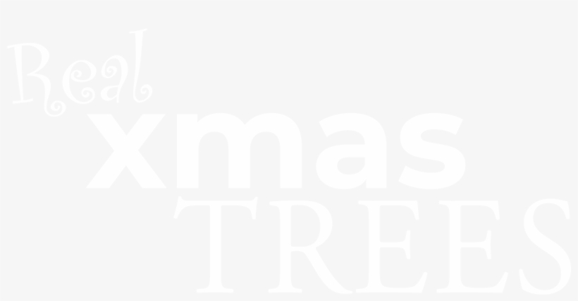 About Murray Xmas Trees - Francine Rivers, transparent png #8745286