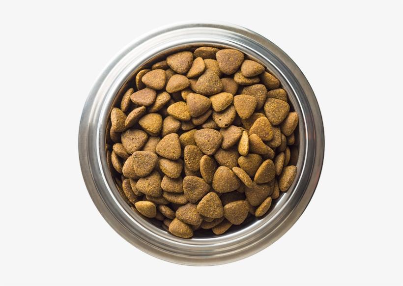 Dog Food, transparent png #883023