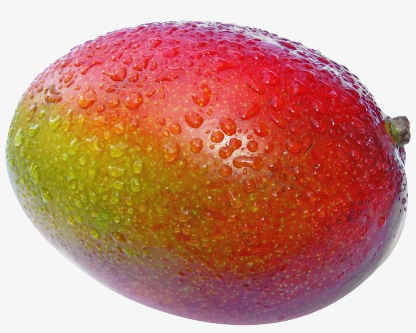Mango Images, Clip Art, Illustrations, Pictures - Mango Fruit, transparent png #8985629