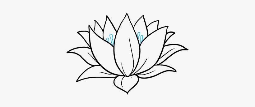 How To Draw A Lotus Flower Really Easy Drawing Tutorial Lotus
