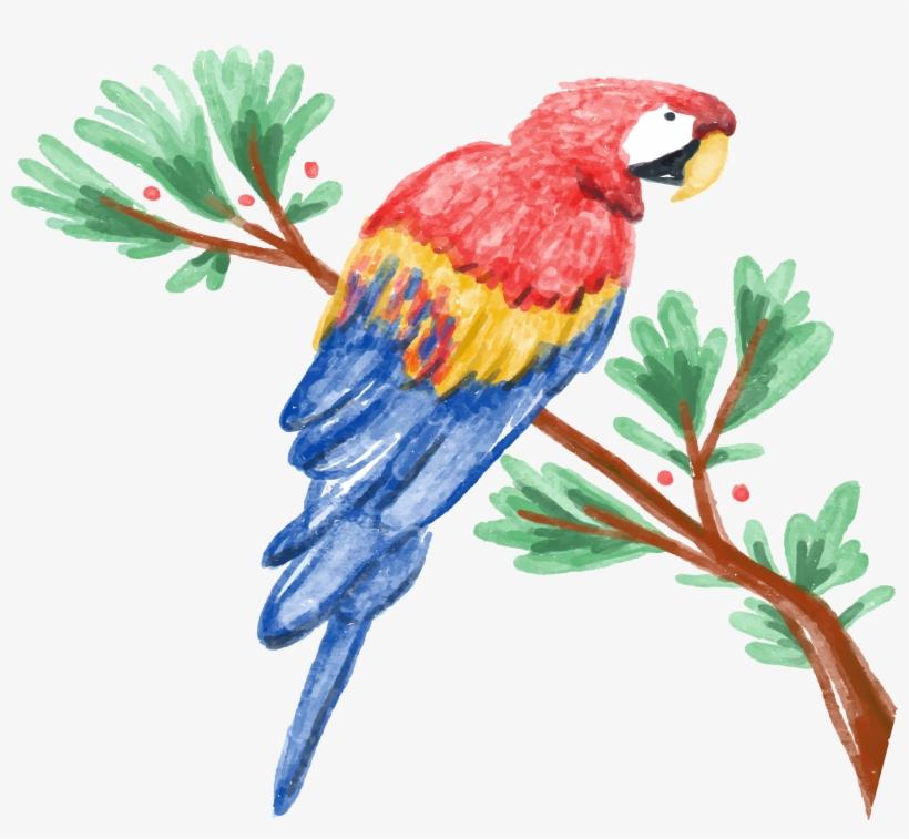 Amazon Parrot Watercolor Painting Illustration - Parrot Watercolor, transparent png #92077
