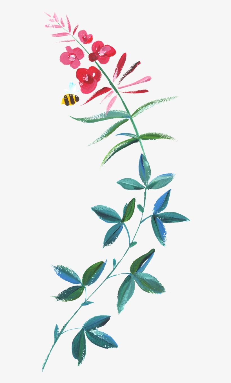 Hand-painted Watercolor Flower - 1 John 5 14, transparent png #96064