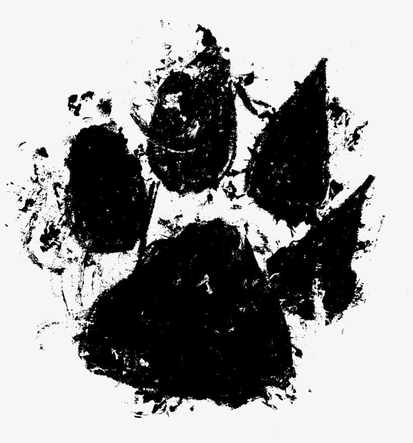 Free Download Paw Print Png Watercolor Free Transparent Png Download Pngkey They must be uploaded as png files, isolated on a transparent background. download paw print png watercolor
