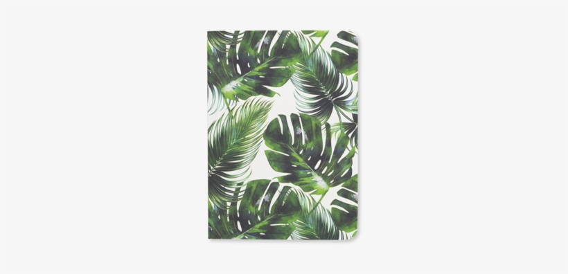 Tropical Leaf - Tropical Leaf Diary 2019, transparent png #907226