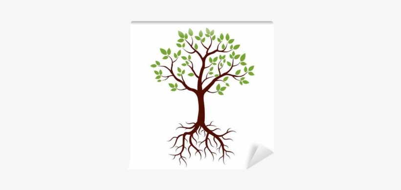Shape Of Tree, Roots And Green Leafs - Tree Clipart With Roots Transparent, transparent png #910426
