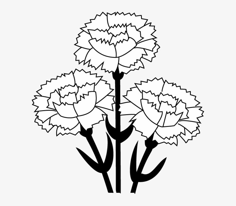 Carnation Clip Art - Carnation Flower Black And White Clipart, transparent png #913141