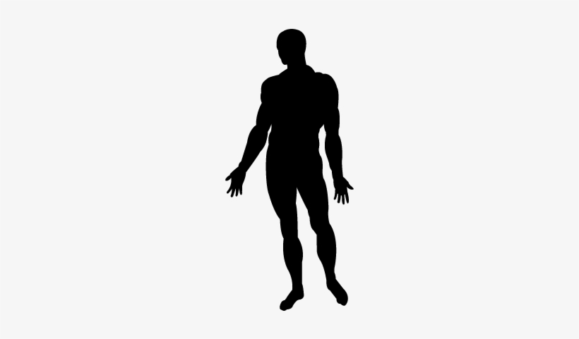 human body standing black silhouette vector man body silhouette free transparent png download pngkey human body standing black silhouette