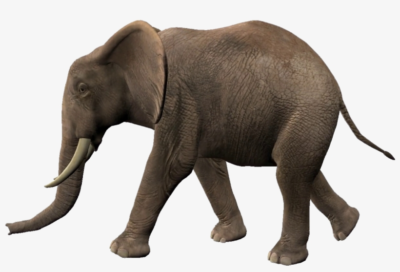 Elephant Walking Animation Free Transparent Png Download Pngkey Elephant and rabbit drawing, drawing child printmaking painting, cute little. elephant walking animation free