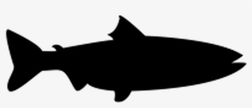 Fish Vector Shape, transparent png #9111578