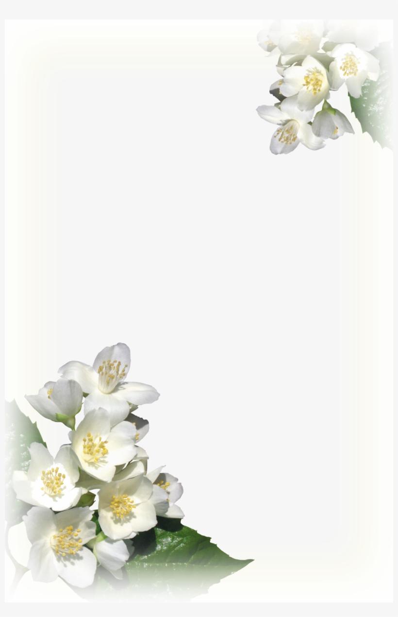 Desenhos Para Ebd Moldura Frame Flores Brancas Free