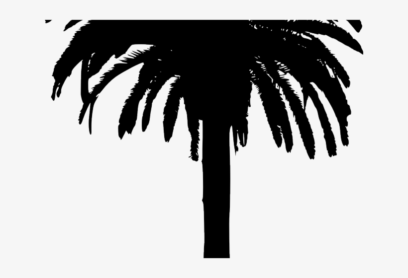 Bamboo Clipart Island Border - Png Silhouette Palm Tree, transparent png #9166692