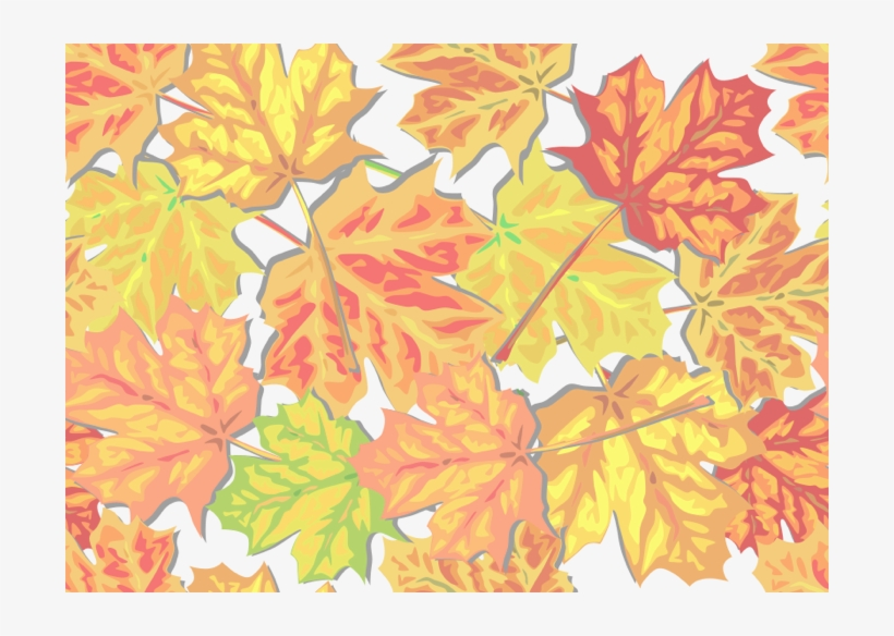 Fall And Autumn Clipart Seasonal - Cartoon Fall Leaves Background, transparent png #926226
