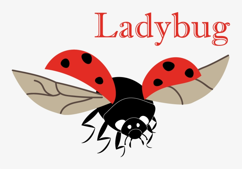 "I've Had This Ladybug For My Animal Alphabet Done For - Go Vegan! Square Sticker 3"" X 3"", transparent png #935401"