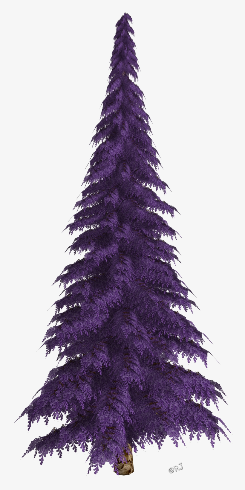 Winter Trees & Christmas Trees - Christmas Tree, transparent png #936964