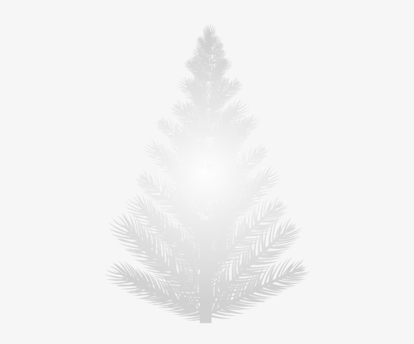White Pine Tree Png Clip Art Image - Christmas Tree, transparent png #937076
