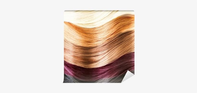 Hair Colors Palette - Colores De Cabello Naturales, transparent png #937897