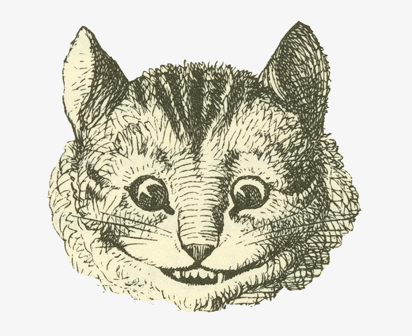 Cheshire Cat - Alice In Wonderland Black And White Cheshire Cat, transparent png #938405