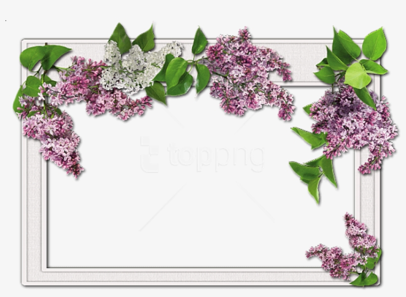 Free Png Best Stock Photos Flowers Frame Background - Wedding Frames For Photoshop, transparent png #9375844