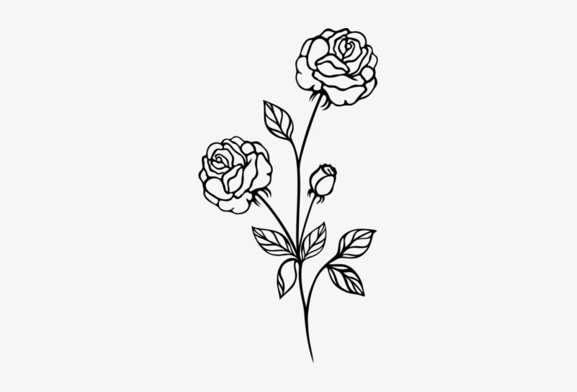White Rose Clip Art Png Image - Rose Plant Black And White, transparent png #942012