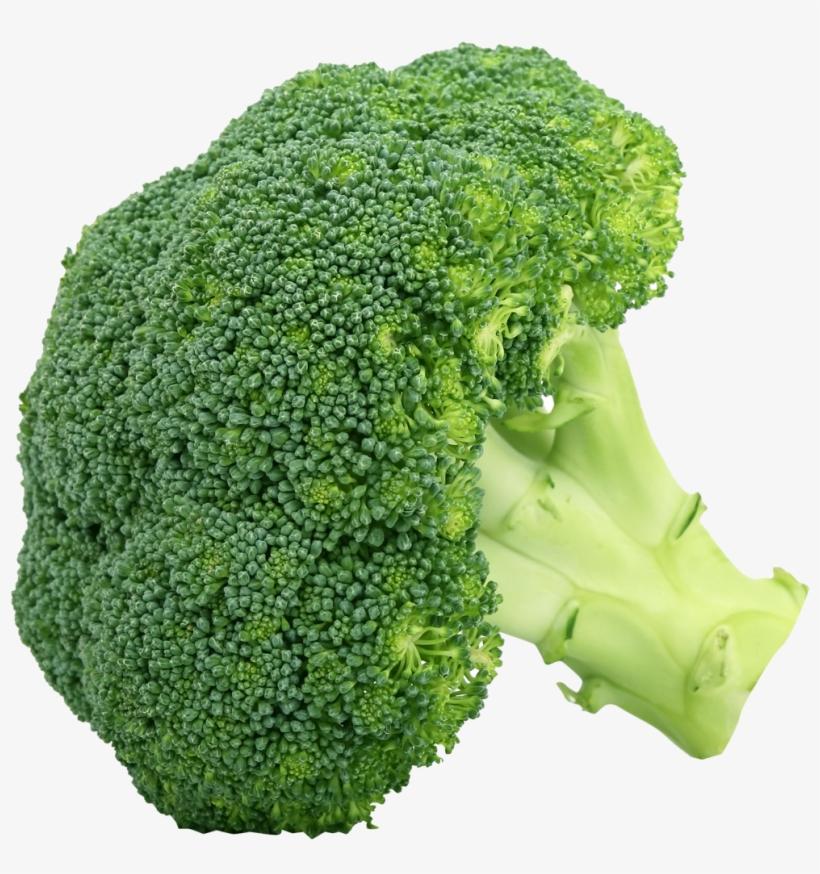 Broccoli Png Clipart Png Mart - Broccoli Png, transparent png #943798