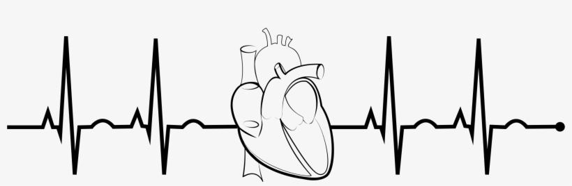 Ekg Realistic Heart Png Free Stock - Ekg Clipart - Free ...
