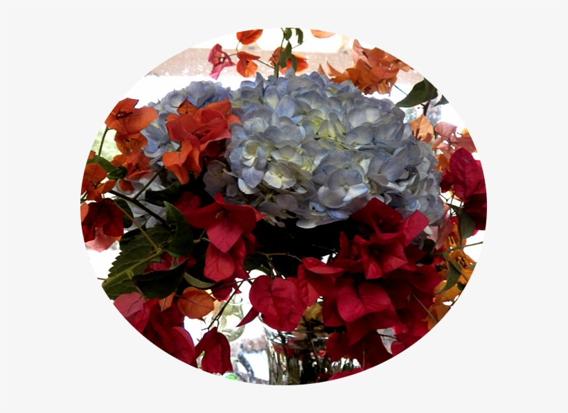The Hydrangeas In The Top Photo Don't Grow Here - Artificial Flower, transparent png #948871