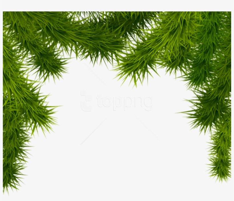Free Png Pine Branches Png - Christmas Tree Branches Png, transparent png #9466832
