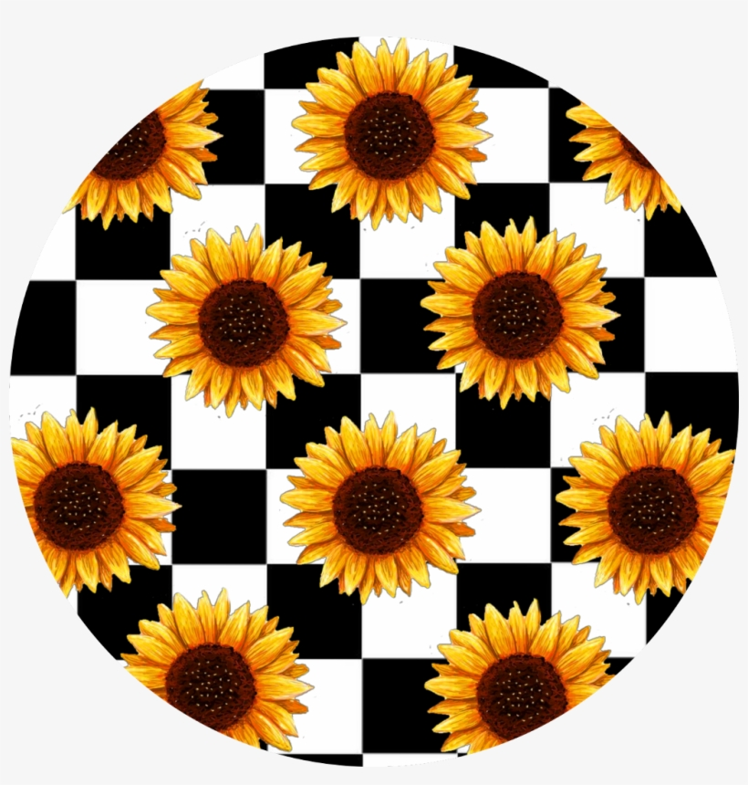 Sunflowers Sticker Aesthetic Sunflower Free Transparent Png