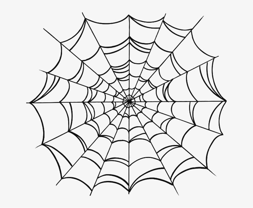 Transparent Tattoo Spider Web - Spider Web Drawing Tattoo, transparent png #954898