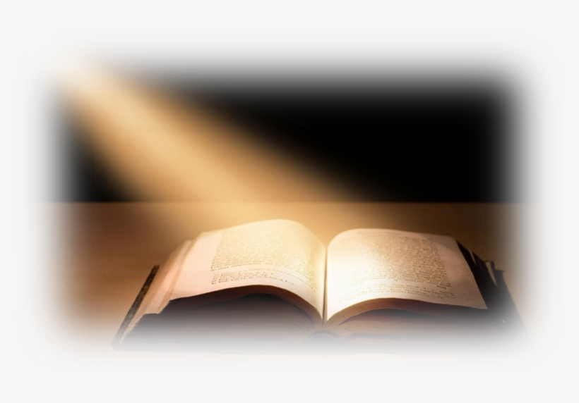 Bible Transparent Png Pictures - Open Bible Transparent Background, transparent png #955831