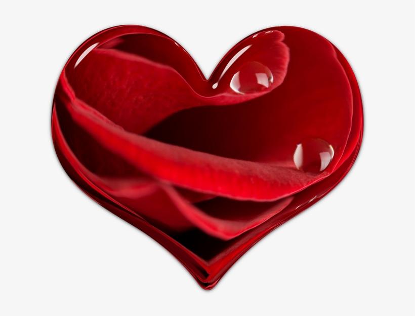 Heart, Flower Heart, Valentine, Red, Element, Love - Valentine's Day, transparent png #9558002