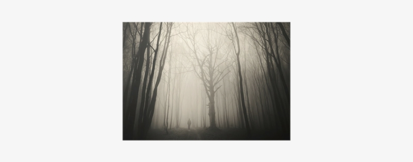 Man Walking Past A Huge Old Tree In A Dark Spooky Forest - Tree, transparent png #961292