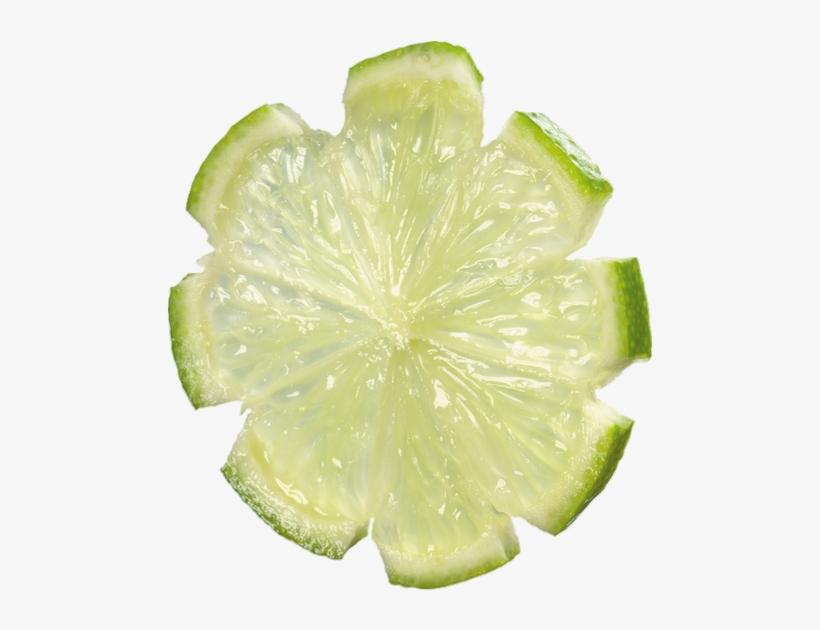 Tube Tranche Fruit Pour Créations, transparent png #964821
