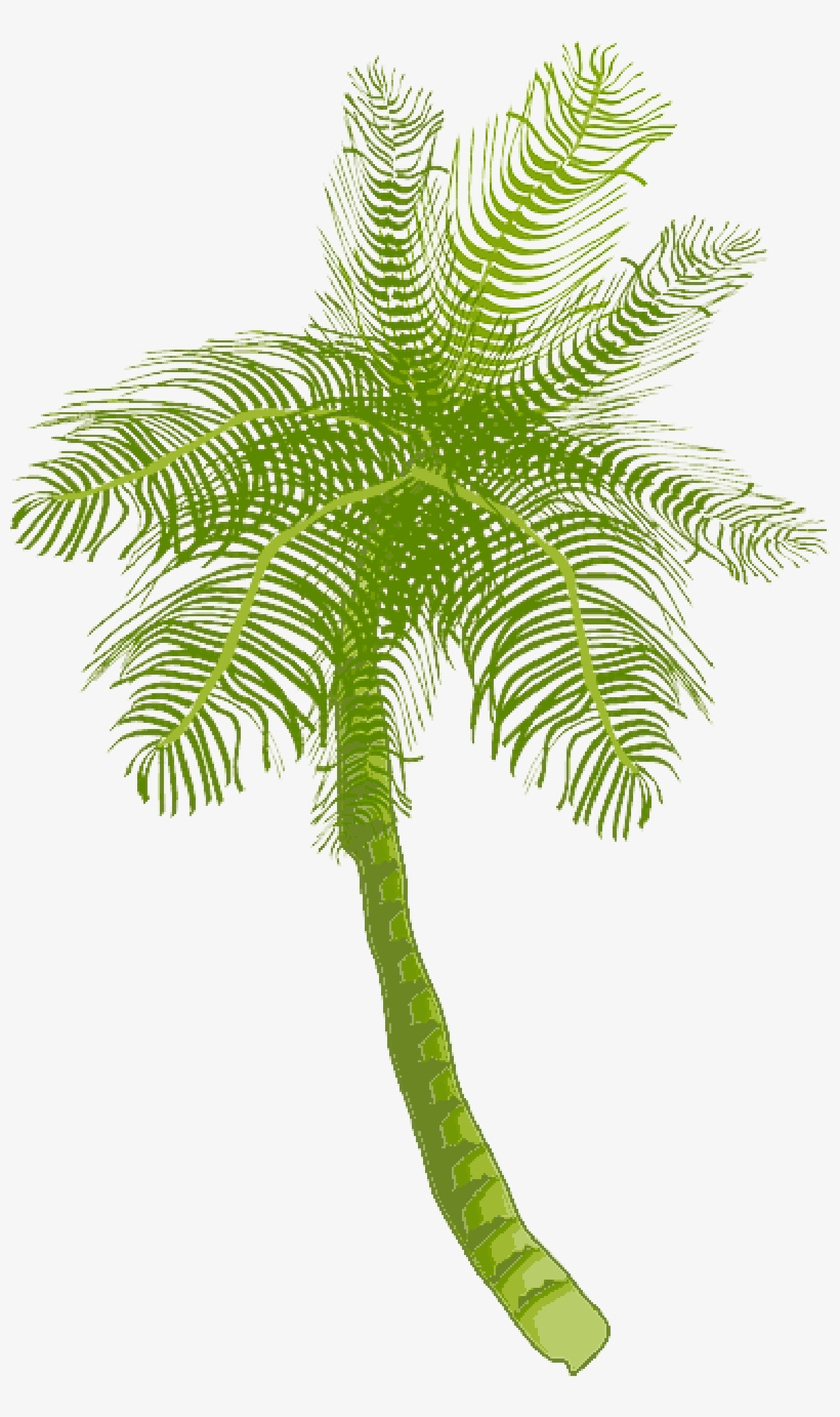 Tree, Ocean, Summer, Vacation, Beach, Palm Leaf - Coconut Tree Clip Art, transparent png #965992