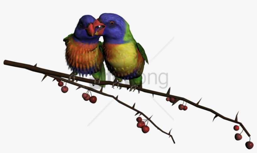 Free Png Beautiful Flying Birds Png Image With Transparent - Beautiful Flying Birds Png, transparent png #9643244